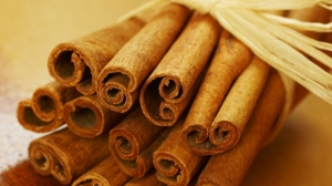hungry-history-cinnamons-spicy-history-E